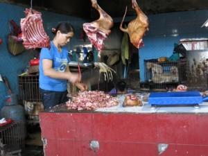 Bazar nieszcześć