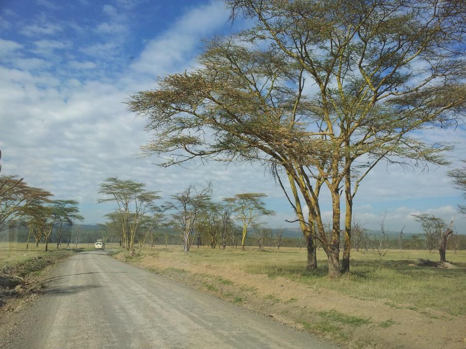 Kenya Nakuru safari