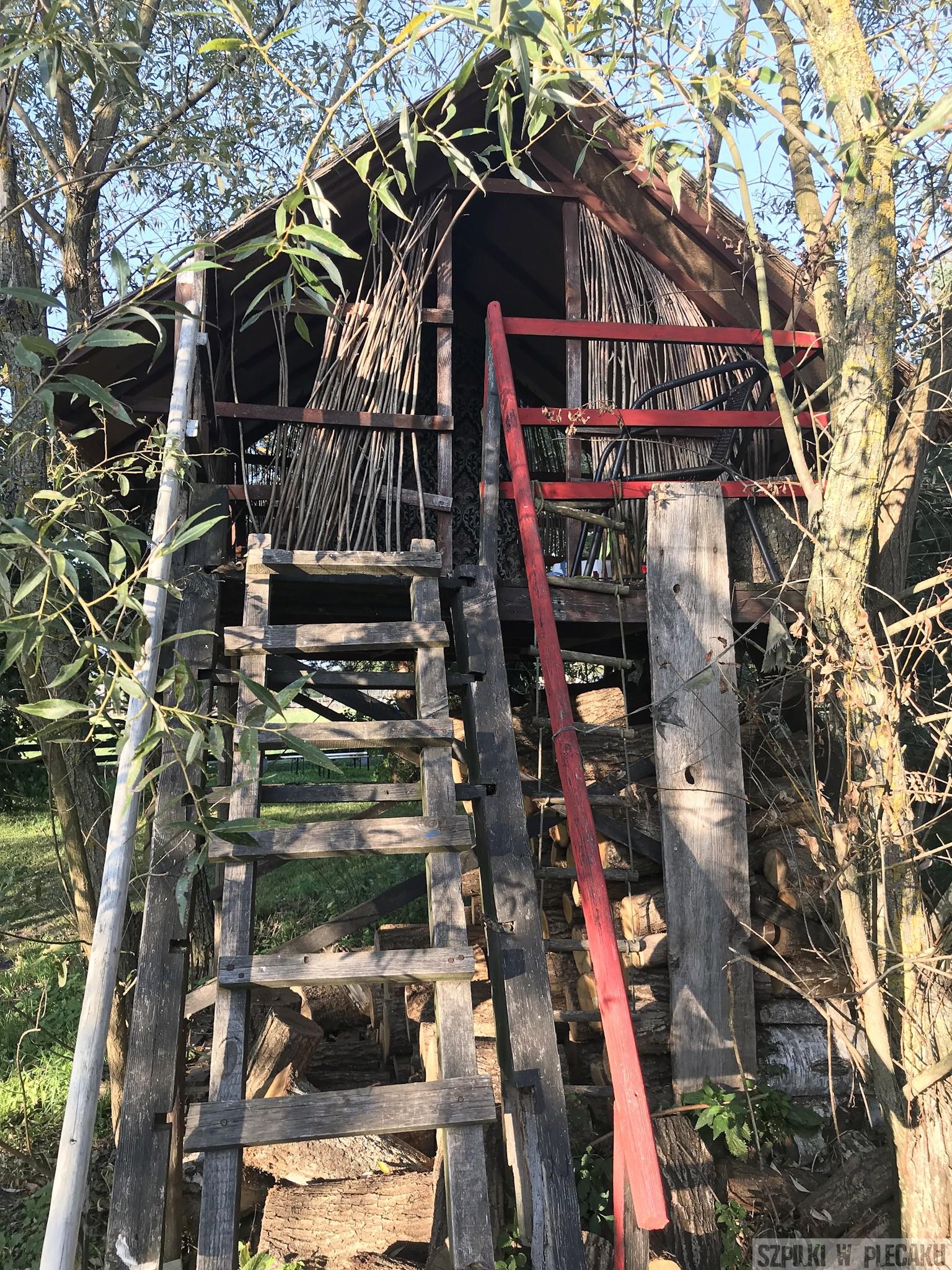 domek na drzewie - Siedlisko Leluja