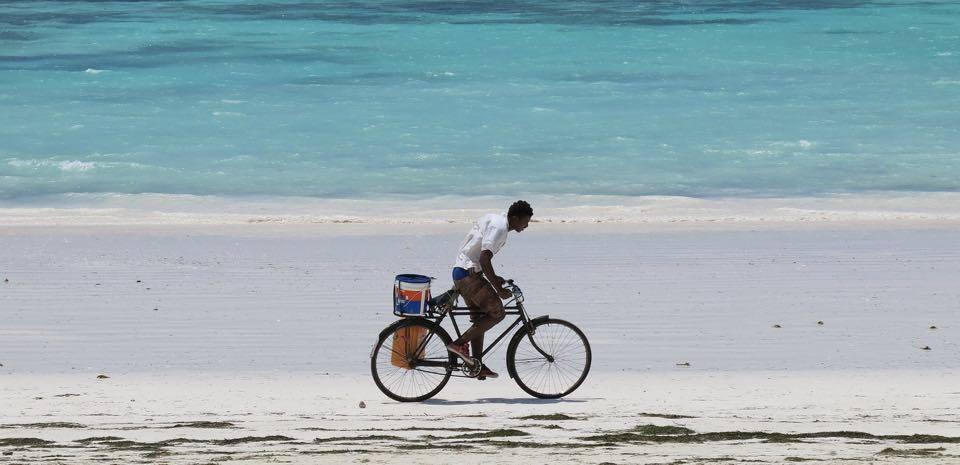 Atrakcje Zanzibaru czyli coś dla aktywnych!