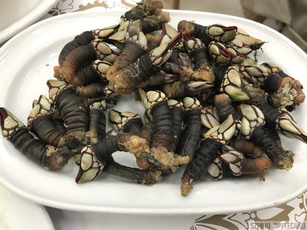 percebes - kaczenice - Portugalia