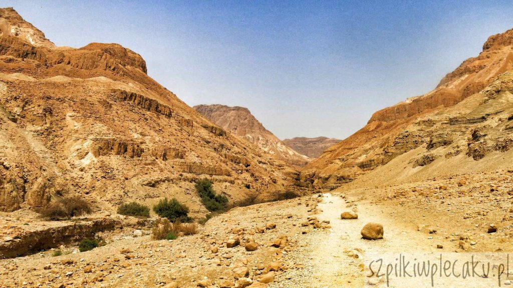 Ein Gedi i mało uczęszczana oaza Wadi Arugat