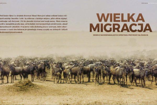 Modny śląsk wielka migracja Ewa Chojnowska Szpilki w plecaku