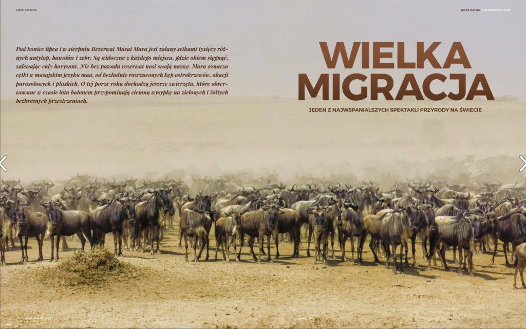 Modny Śląsk – Wielka migracja