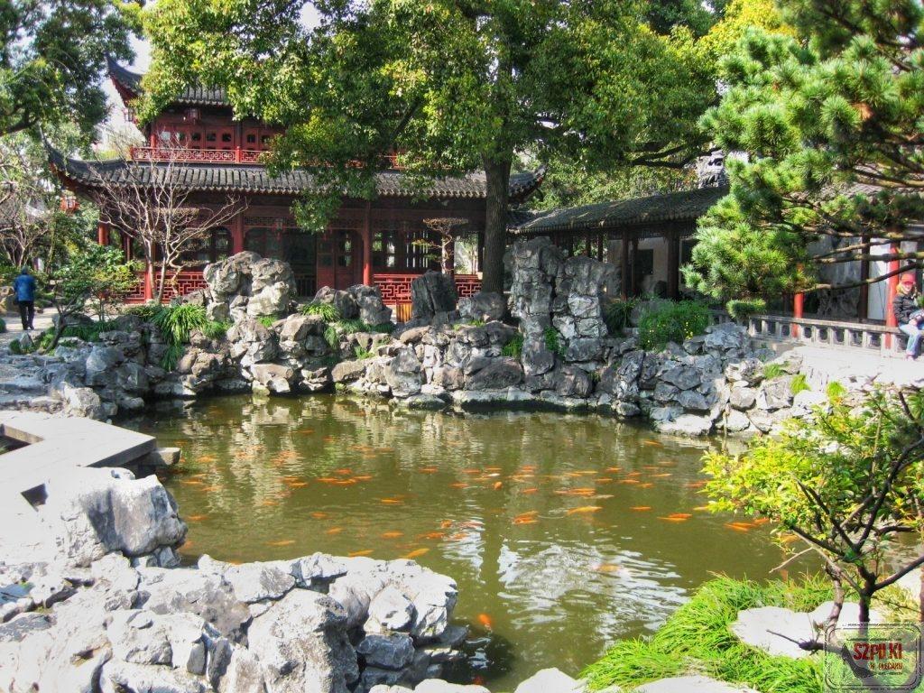 ogród w Szanghaju