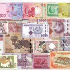 zwierzęta na banknotach
