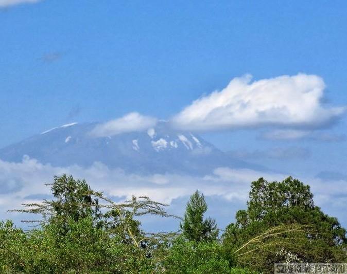 Kilimanjaro-1