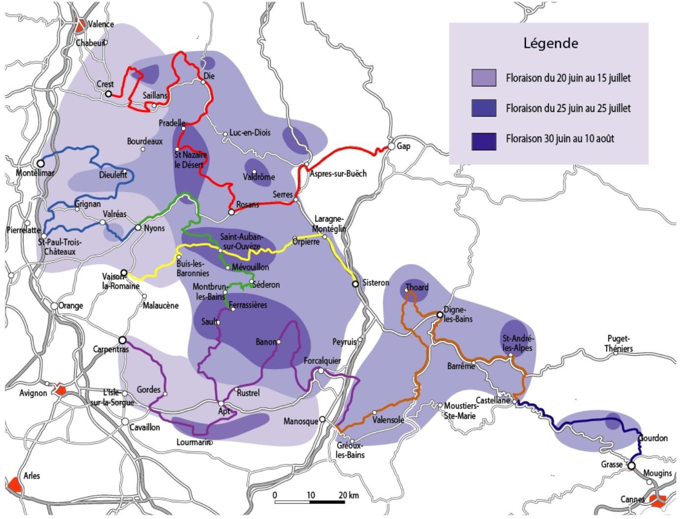 mapa pól lawendowych w Prowansji