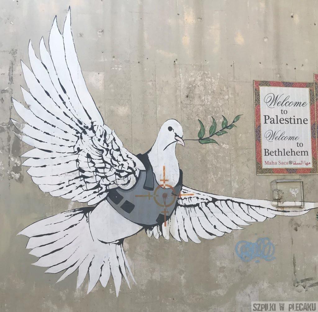 Banksy - Palestyna - gołąbek