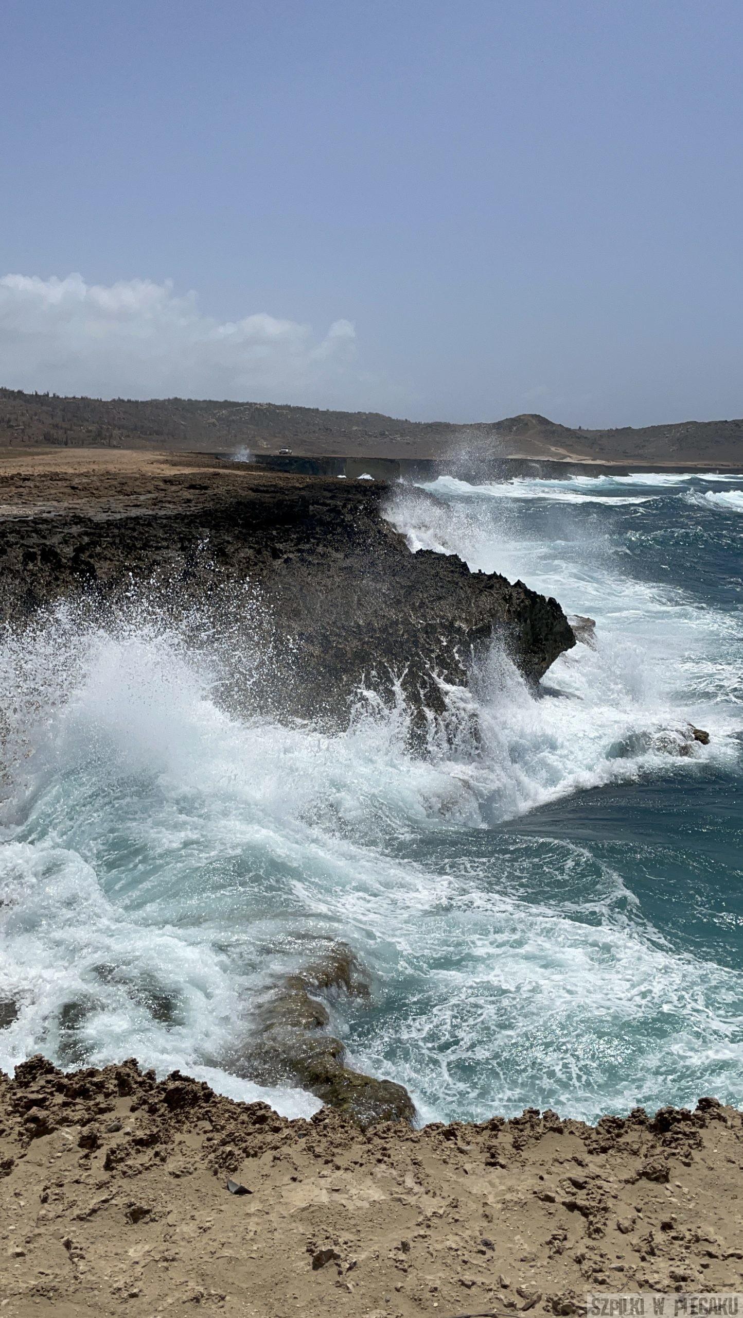 Aruba - Szpilki w plecaku