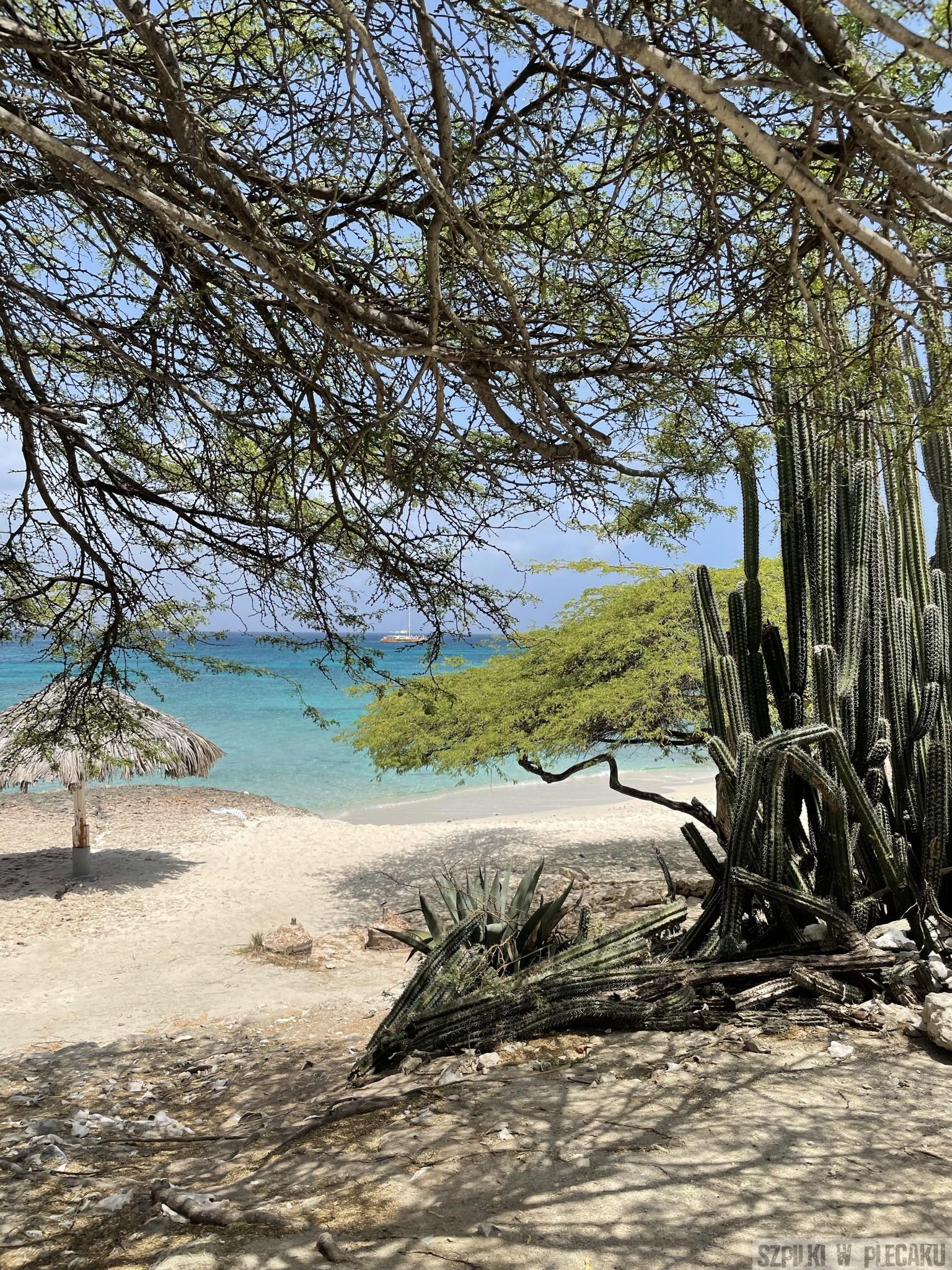 Boca Catalina - Aruba