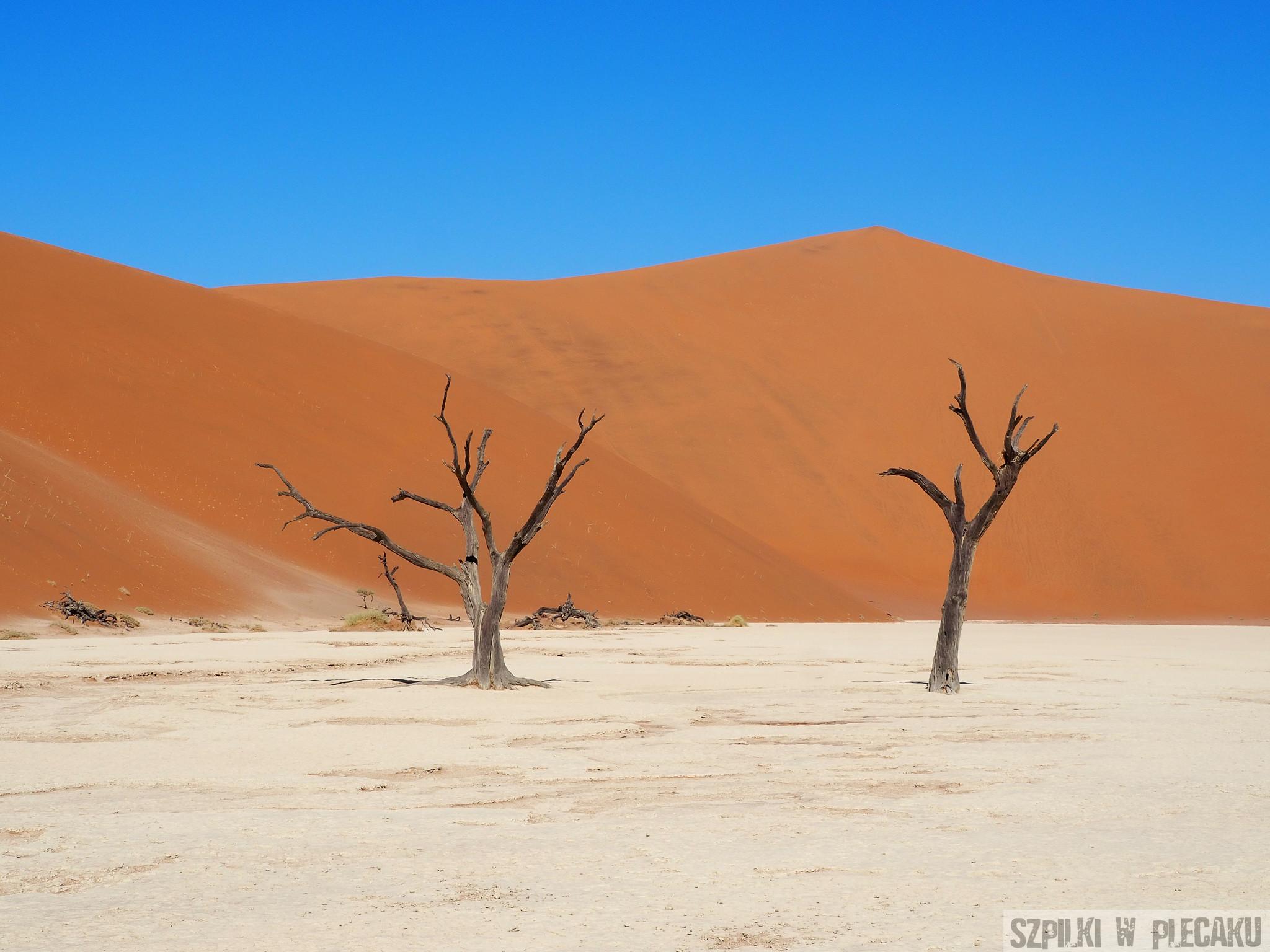 Oszałamiające cuda natury Namibii!