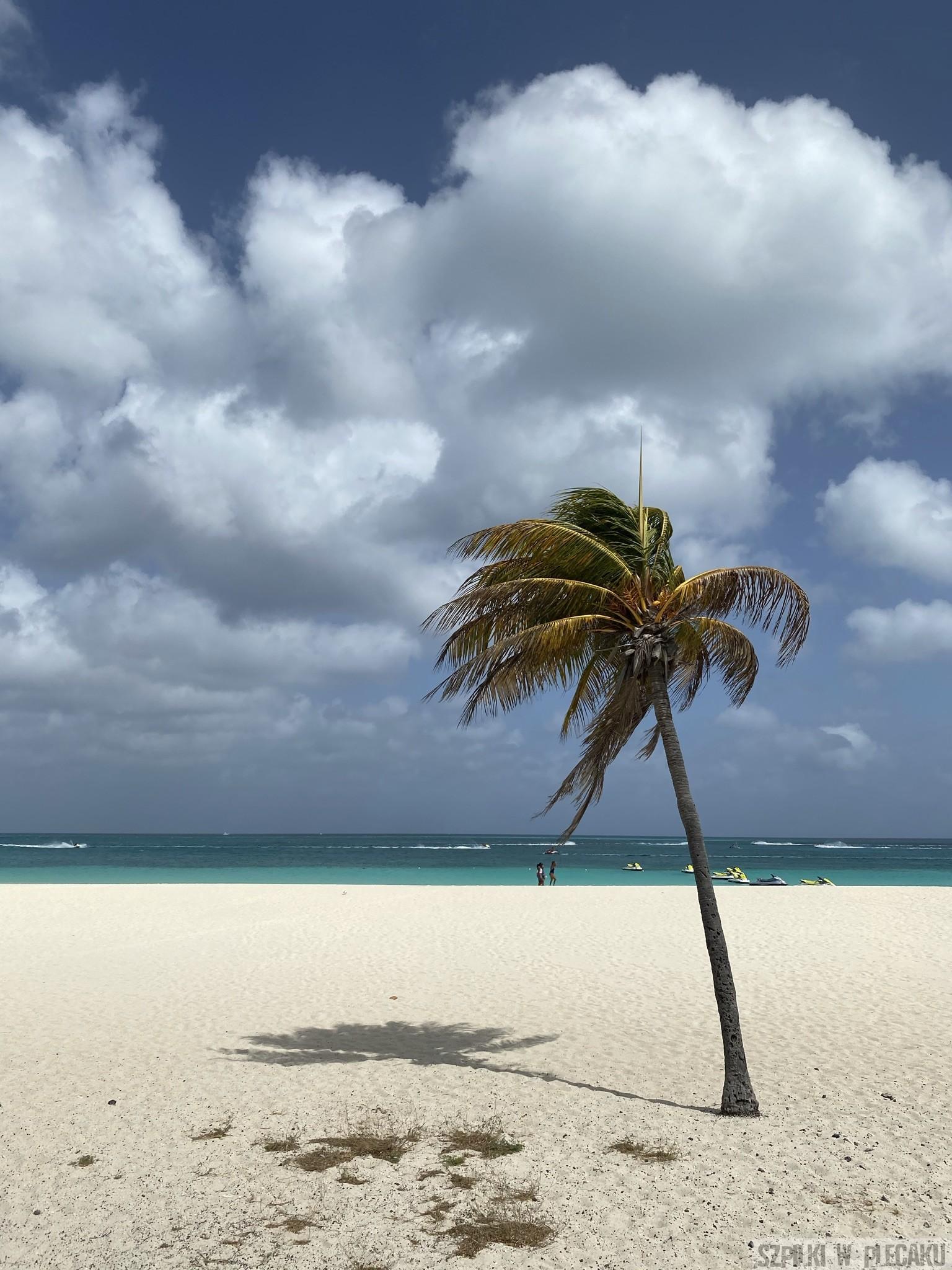 Eagle beach - Aruba - Szpilki w plecaku