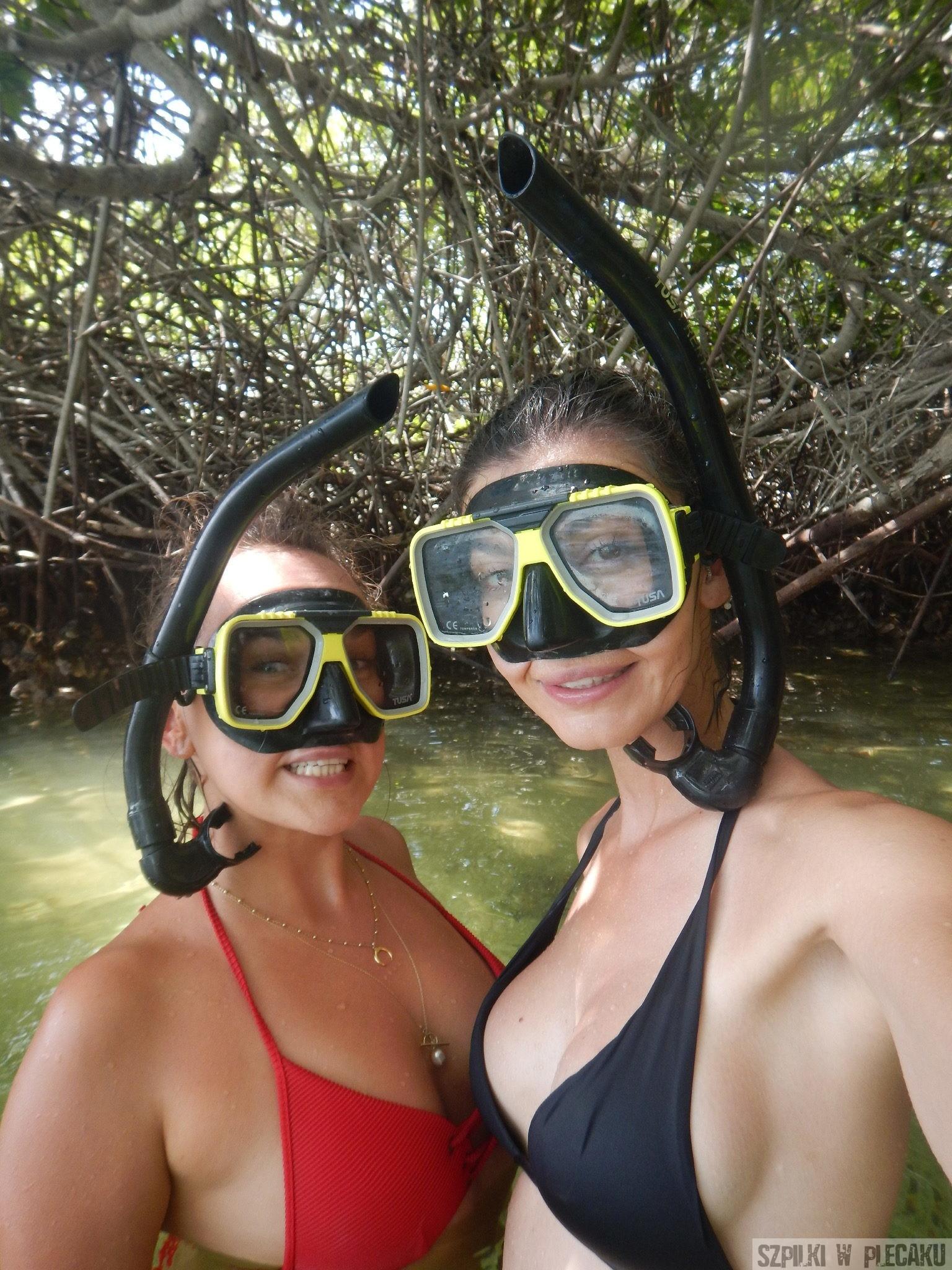nurkowanie wśród mangrowców - Bonaire - Szpilki w plecaku